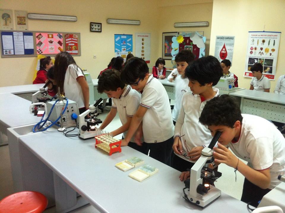 5.Sınıf Öğrencilerimiz Mikroskobik Canlı, Bitki ve Hayvan Hücrelerini İncelediler