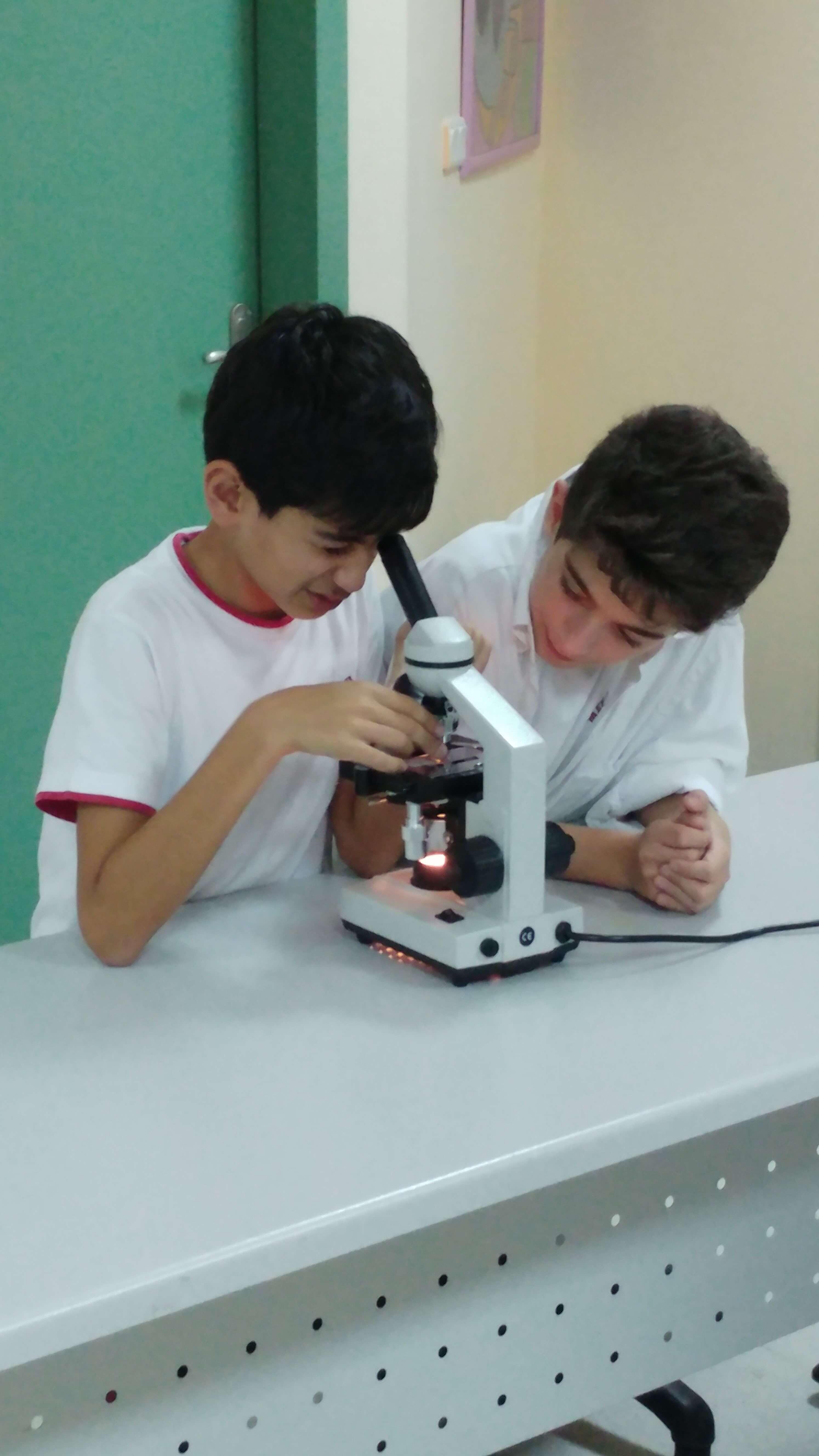 Çevreyi Yaşatma Kulübü Öğrencilerimiz Bitki ve Hayvan Hücrelerini İncelediler