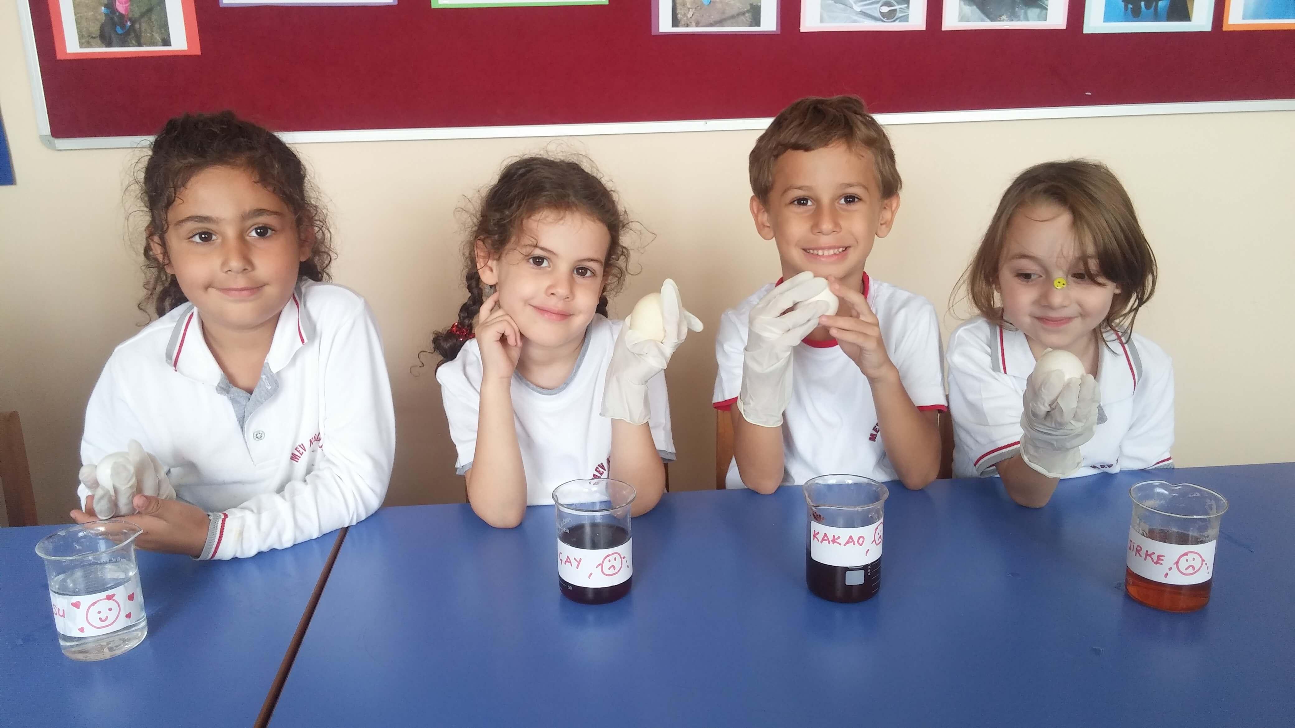 """Ana Sınıfı Öğrencilerimiz """"Dişlerimize Neler Oluyor?"""" Deneyini Gerçekleştirdiler"""