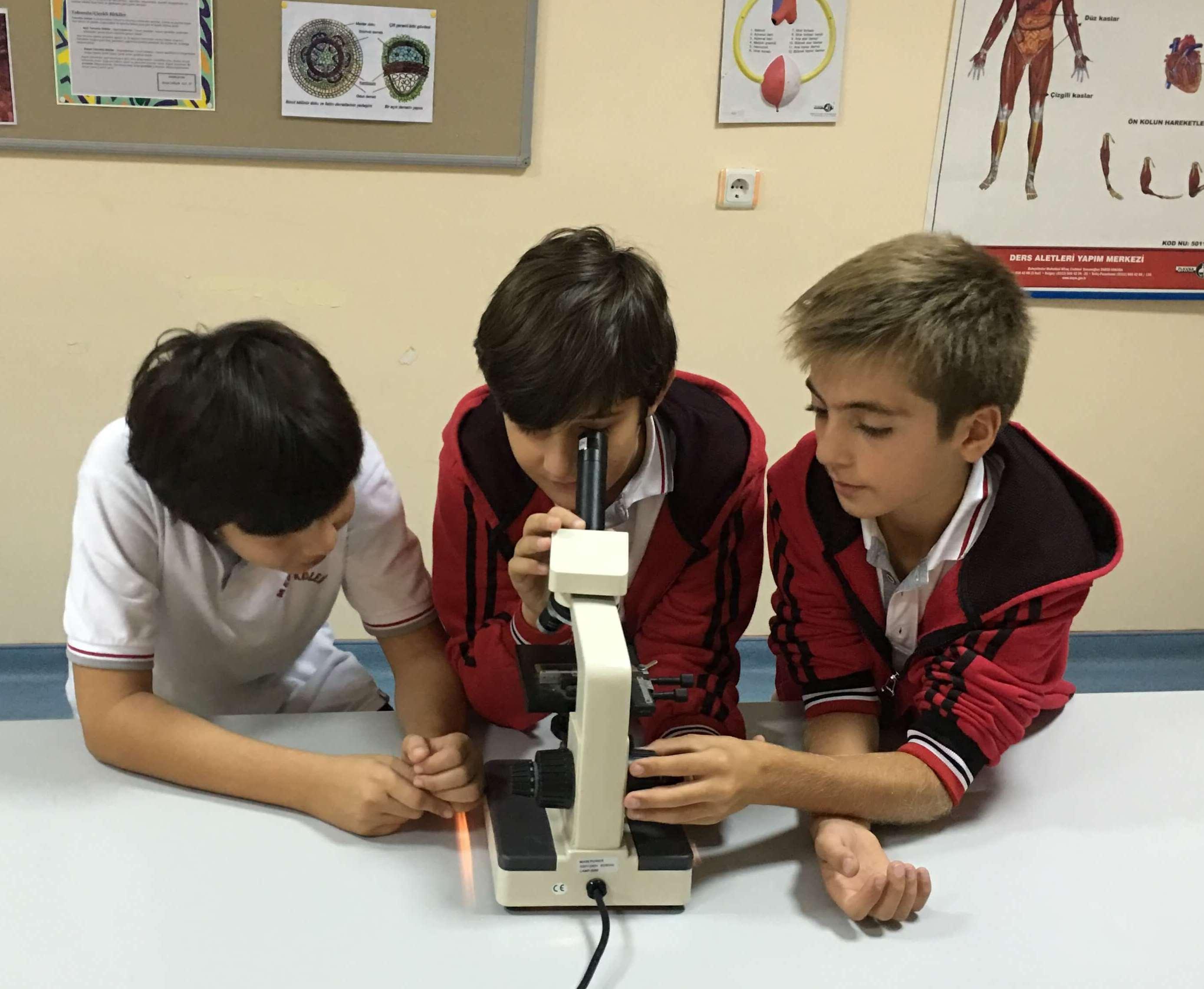 6. Sınıf Öğrencilerimiz Canlı Hücrelerine Ait Örnekleri Mikroskopta İncelediler